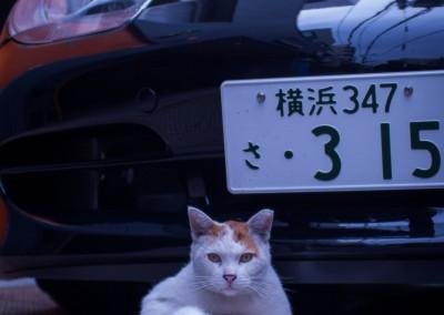 japan 09-1-8